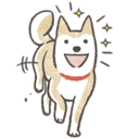 :shiba_excited: